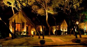 outdoor lighting - landscape lighting